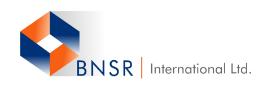 BNSR International